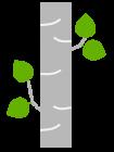 graybirch_logo